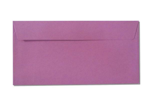 DL purple envelopes