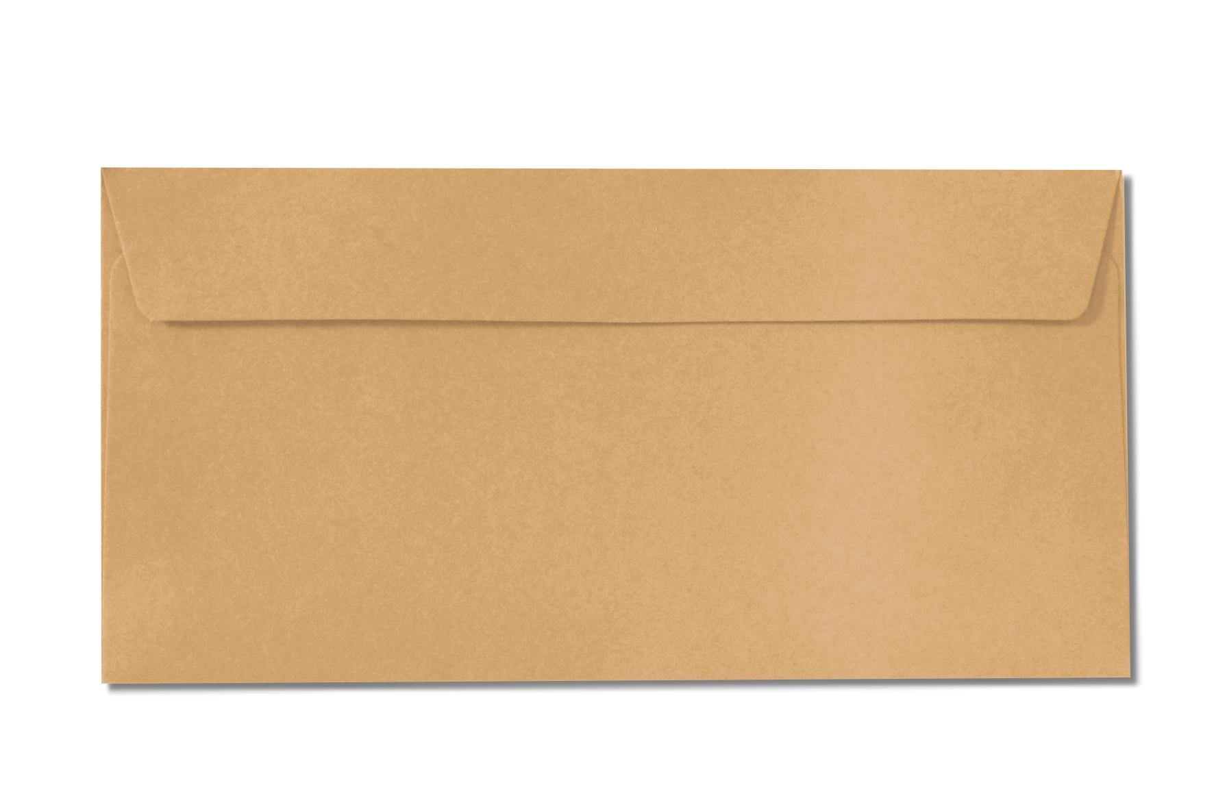 DL orange envelopes